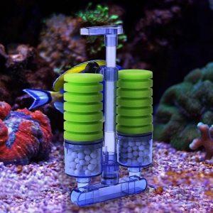 Nitrifying Bacteria in Fish Tank