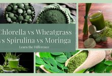 Chlorella vs Wheatgrass vs Spirulina vs Moringa