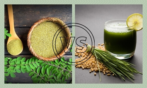 Moringa vs Wheatgrass